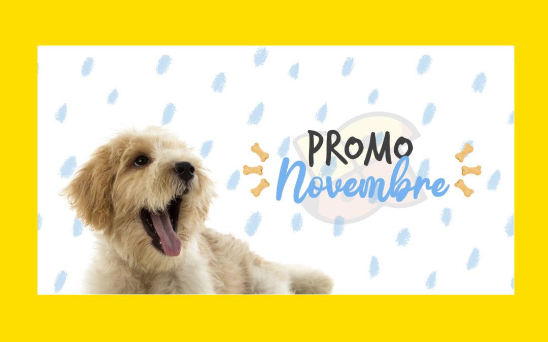 Promo Novembre 2020